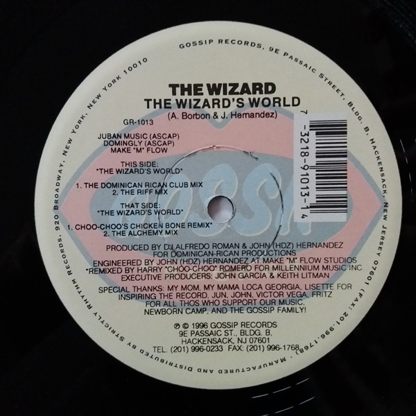 The Wizard - ''The Wizard's World''
