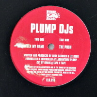 Plump DJs - ''The Push / Remember My Name''